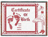 Mini_birth_certificate
